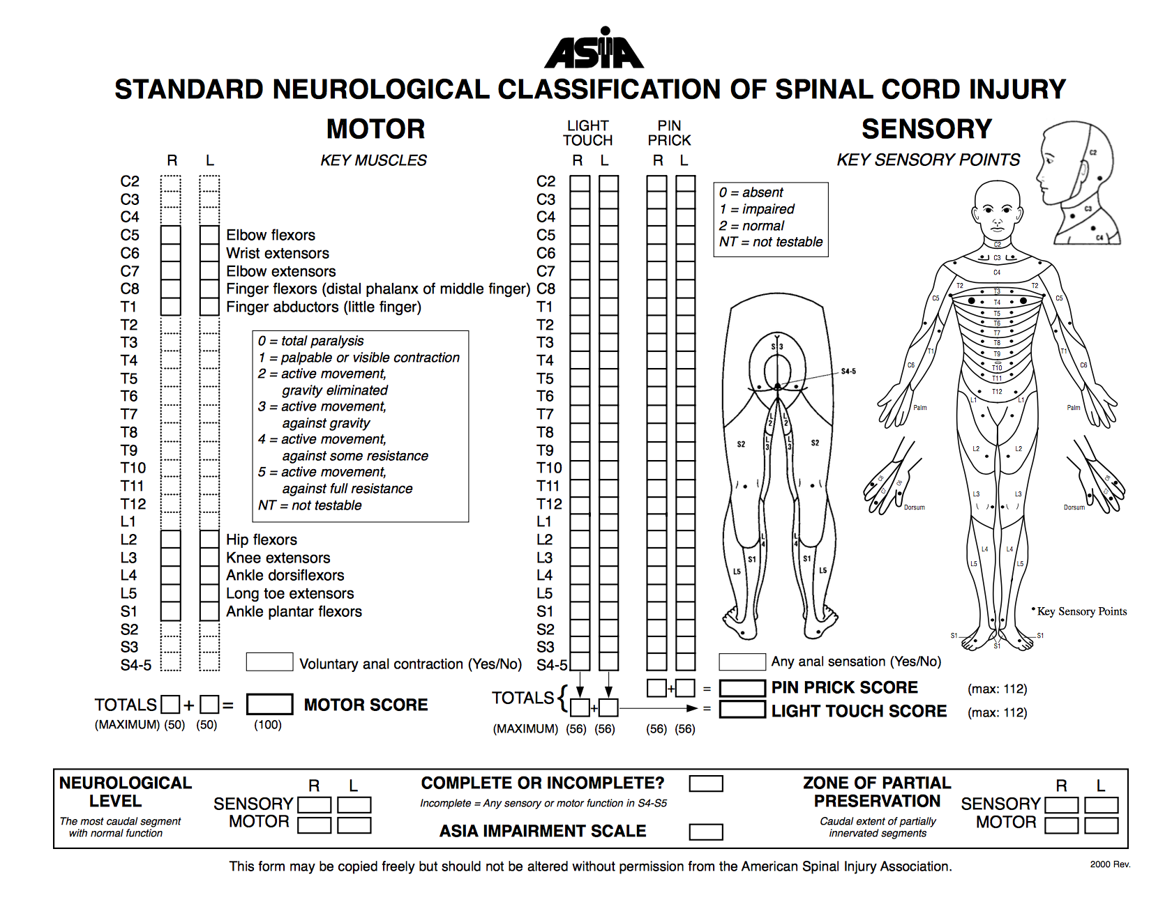 International Standards For Classification Of Spinal Cord